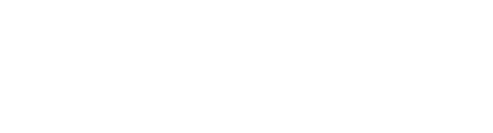 Downtown Bellevue Network